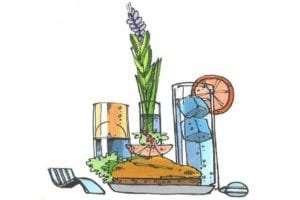 Et lækkert måltid mad og en blomst på bordet